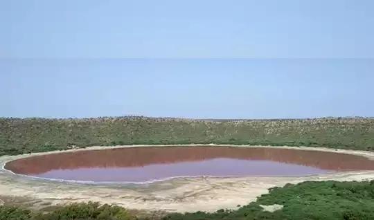 जगप्रसिद्ध लोणार सरोवराचे पाणी का होत आहे लाल ?